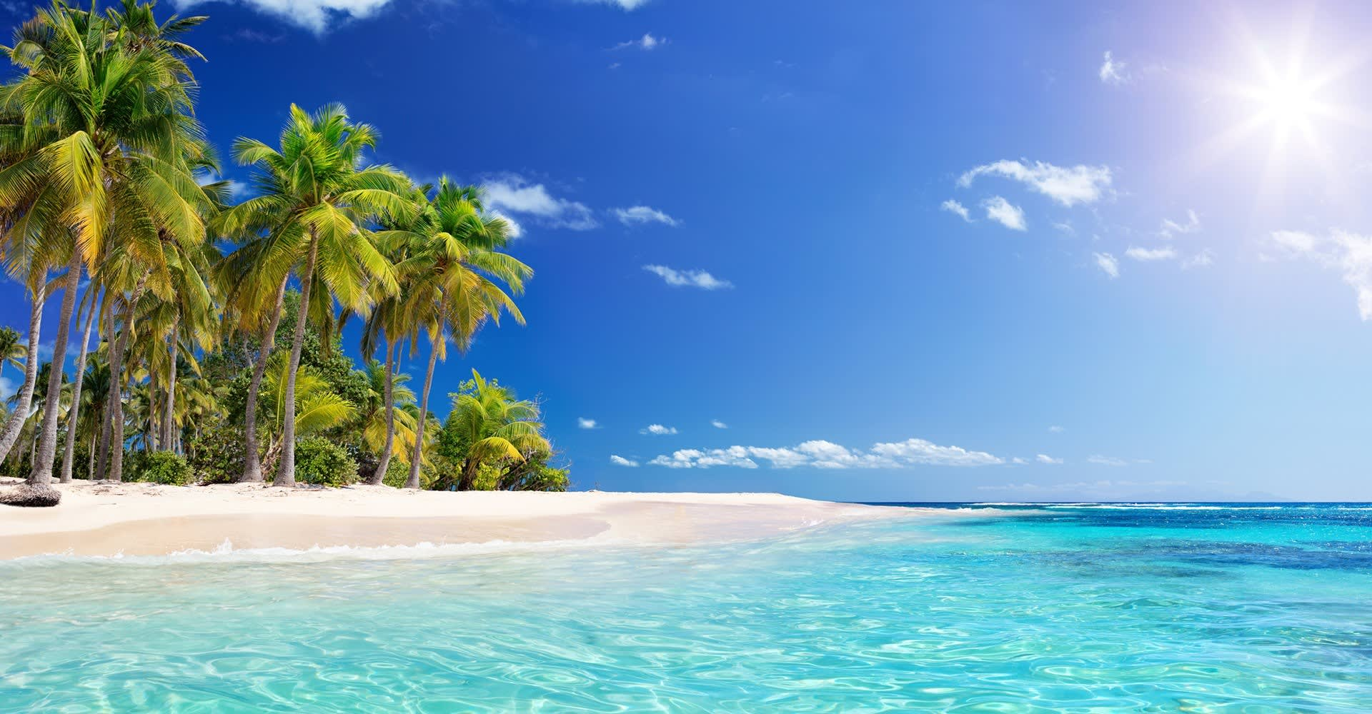 Playa del Carmen Hotel Bachelor Package