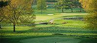 Golfing at Turf Valley Resort, Ellicott City