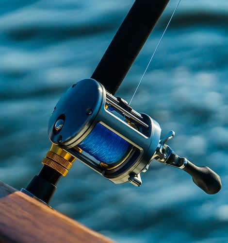 Sport Fishing in Puerto Vallarta