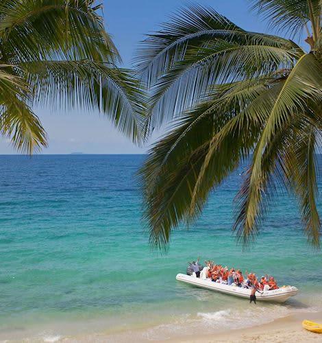 velas vallarta the beach