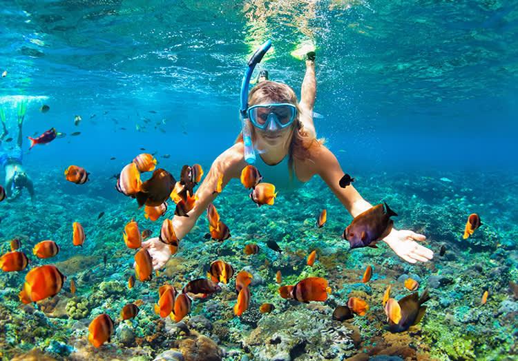 Snorkeling at El Arco, Mexico