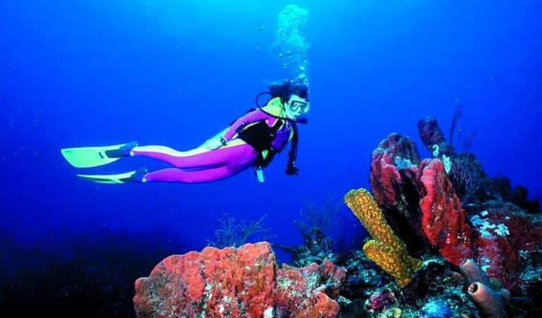 Florida Resort Scuba Diving and Snorkeling