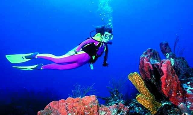 The Best Scuba Diving in Deerfield Beach