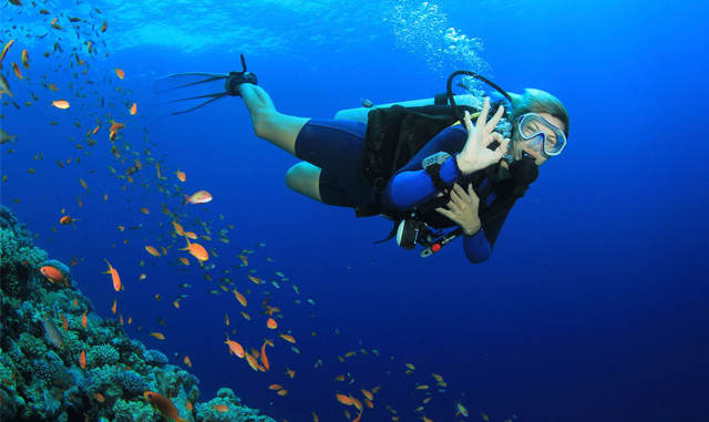 Scuba Diving and Snorkeling in South Florida
