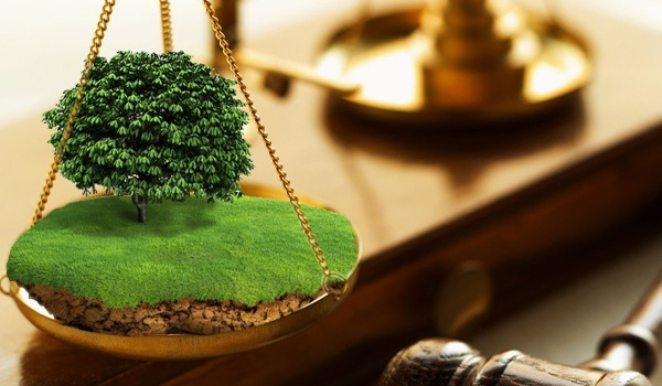 В иске об освобождении земельного участка отказано, так как истец не наделен правом на обращение в суд с исками об освобождении незаконно занятых земельных участков …
