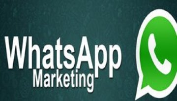 Dreamworth is one of the top whatsApp marketing service provider in Pune