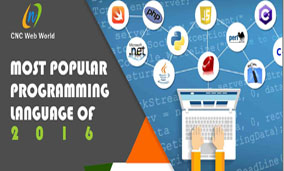 infographics on popular programming langauge of 2016