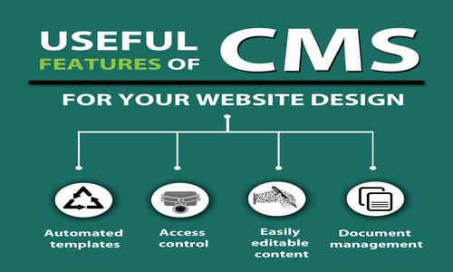DreamWorth Solutions is the best CMS Company in Pune
