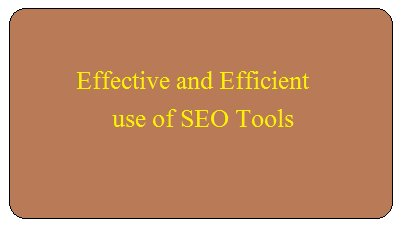 we are the seo consultant in Pune