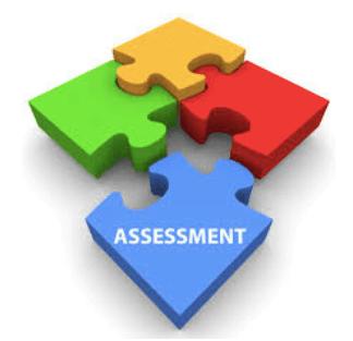 UX Assessment