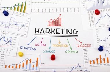 Startup_Marketing