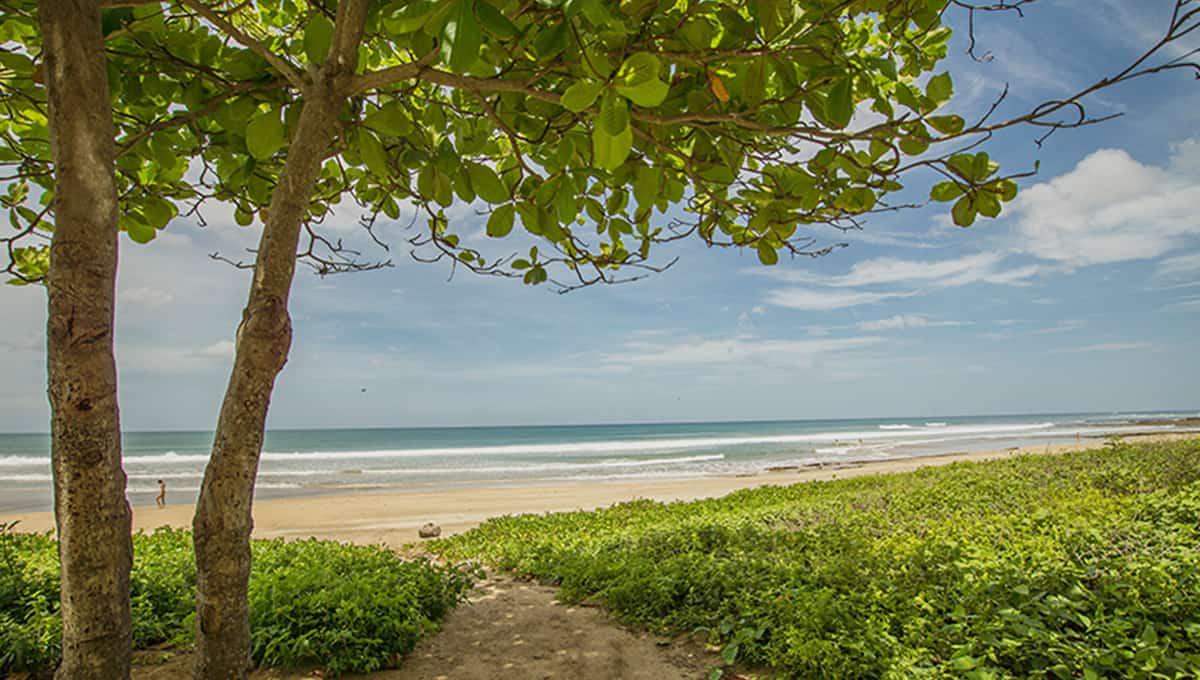 casaleon-beachaccesspath-pinilla