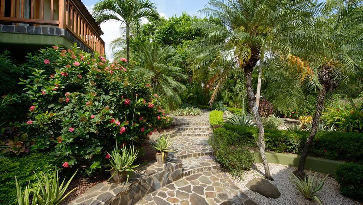 monomalo-gardenpath-langosta