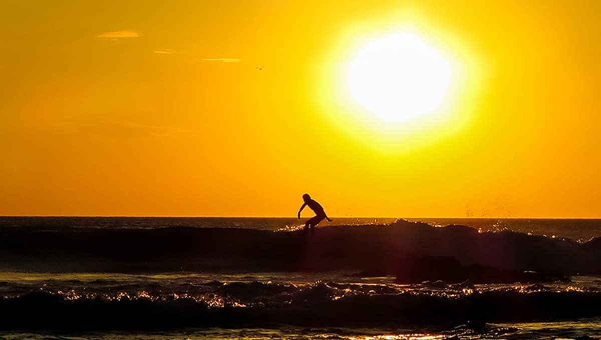 horizontes sunsetsurfer langosta
