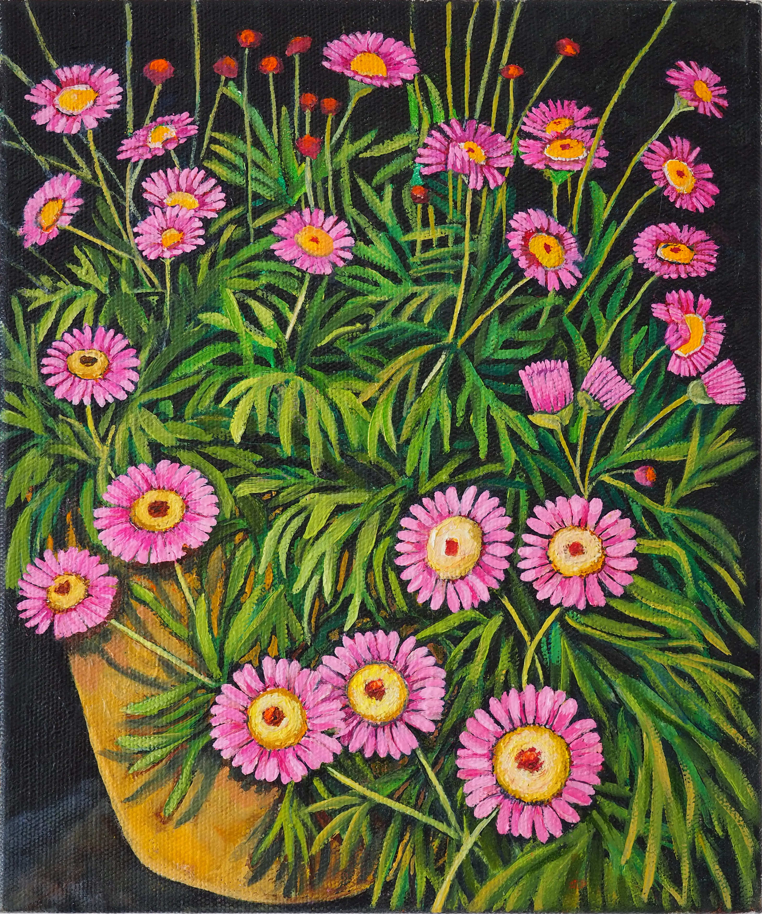 Potted Pink Daisies 35x30cm oil on canvas $400