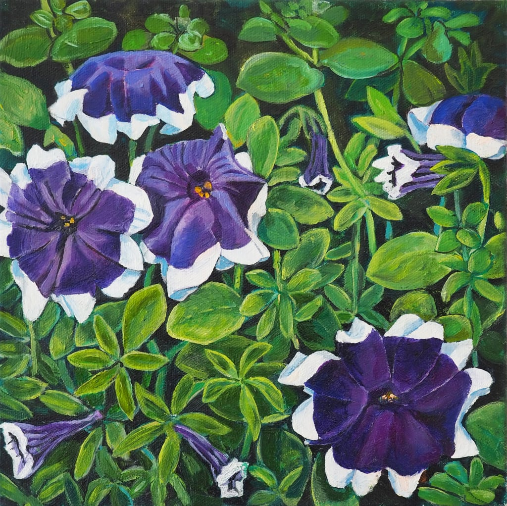 Giant Face Petunias 25x25cm oil on canvas $350 SOLD