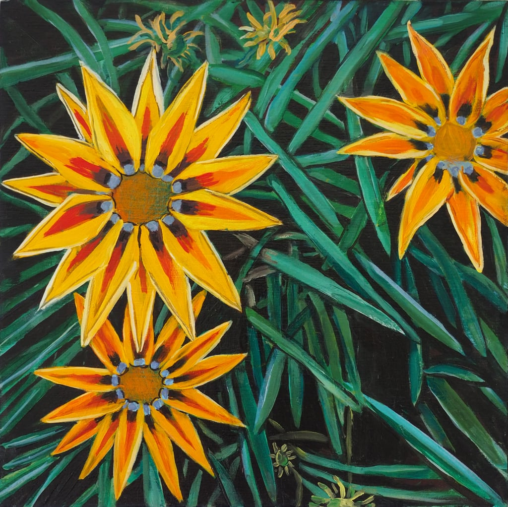Big Kiss Gazania 25x25cm oil on board $300