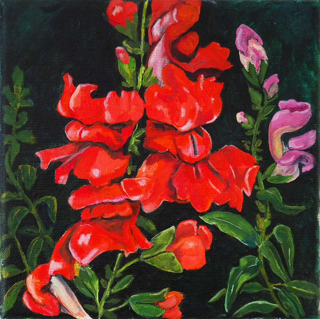 Scarlet Snapdragon 20x20cm oil on canvas $250