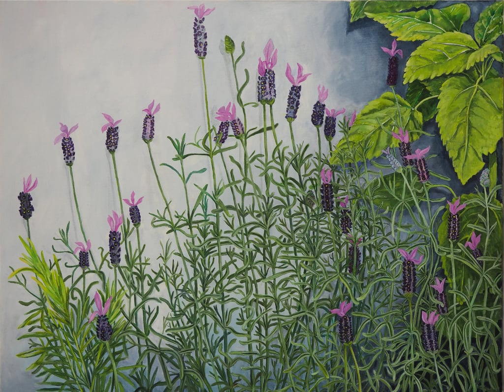 English Lavender 61x76cm oil on canvas $1200