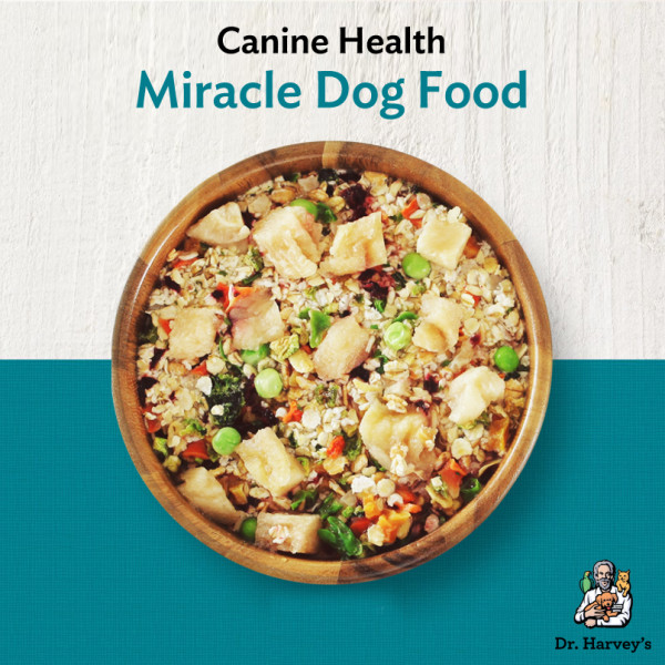 Making miracles with homemade dog food dr harveys graphic of canine health forumfinder Image collections
