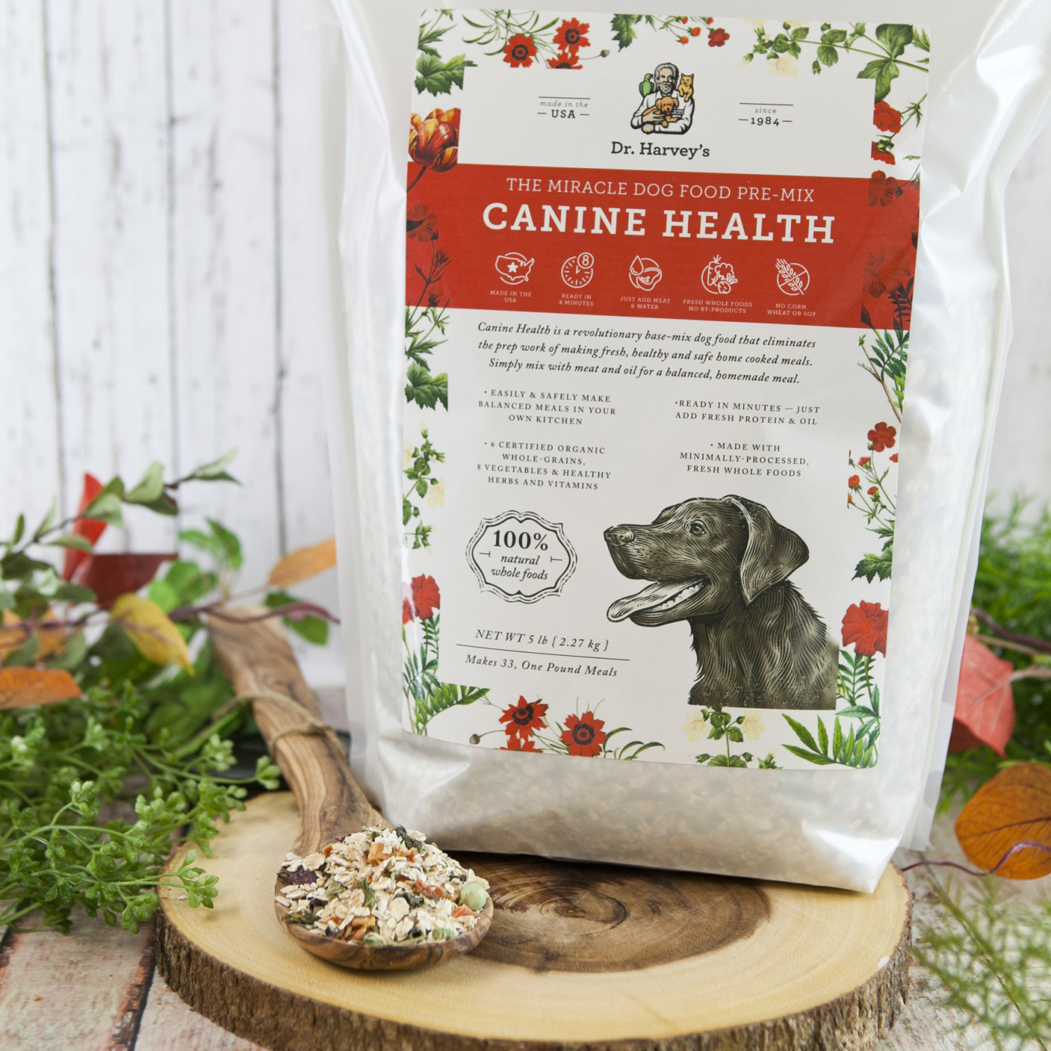 Why Switch to Canine Health? More Vitality; Homemade Dog Food ...
