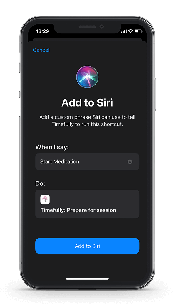 Use Timefully with Apple's iOS Shortcuts.