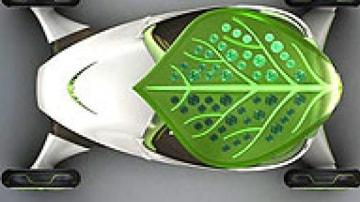 leaf_car_pointer