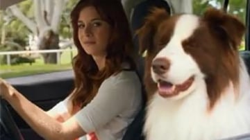 A Jeep ad where a female owner's dog misbehaves after a bout of jealousy was one of the most complained about ads of 2013.