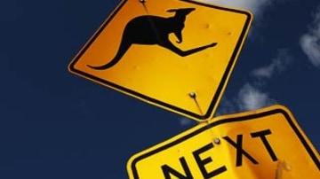 How to avoid hitting a kangaroo