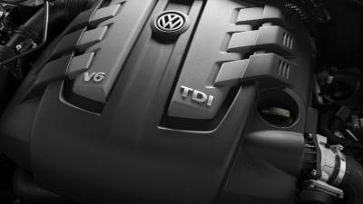 VW Used Monkeys To Test Diesel Emissions