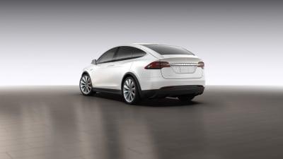 Tesla Model X Details Sneak Out Via Online Configurator