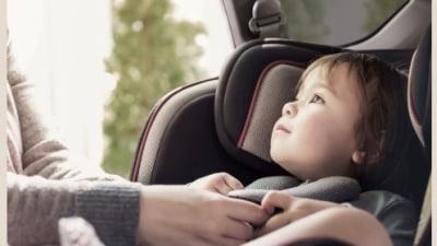 ANCAP calls for toddler-saving technology