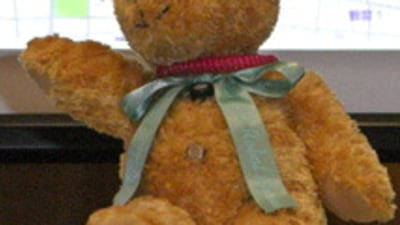 Domo Arigato, Teddy Roboto
