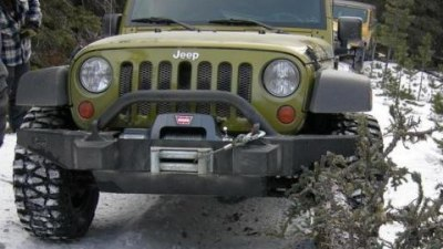 The Wrangler and the Wrangled