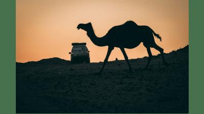 2021 Dakar Rally