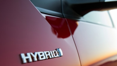 Everything You Need to Know About Hybrids