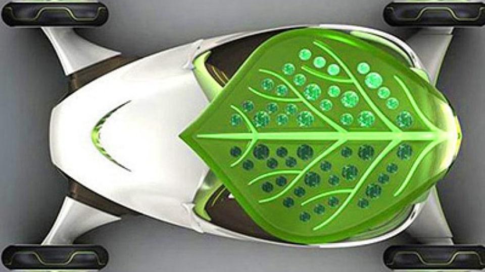 leaf_car_400x267