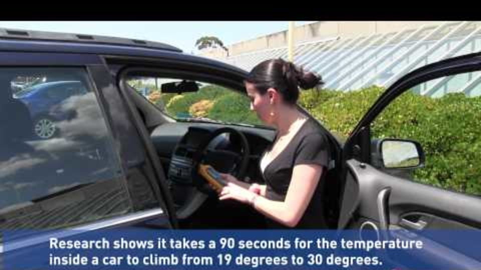 RACV Warns Of Hot Car Danger As Summer Hits: Video