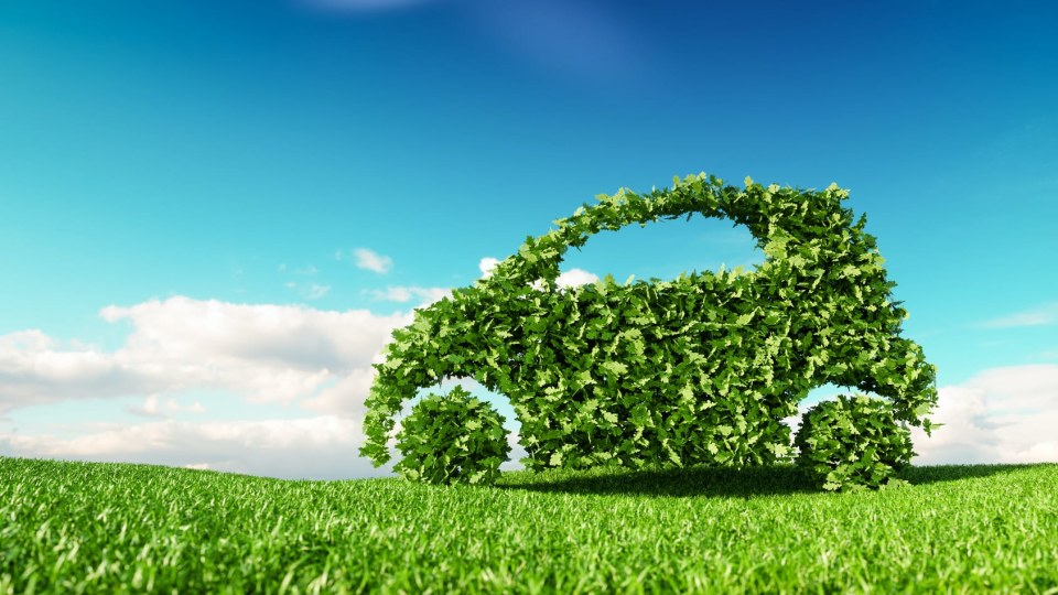 Car made out of green leaves
