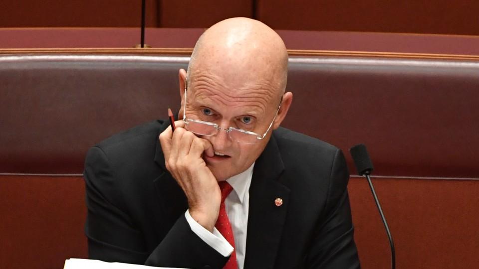 Liberal Democrats Senator David Leyonhjelm.