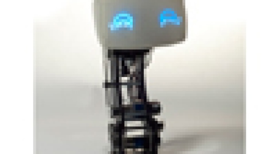 MIT/Audi in-car robot