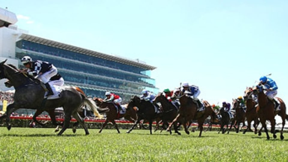 Horses to horse power: F1 is rumoured to move to Flemington.
