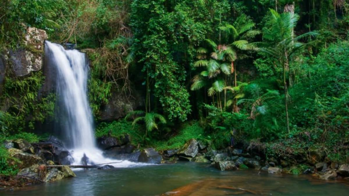 Brisbane day-trips: Five easy drives without the crowds