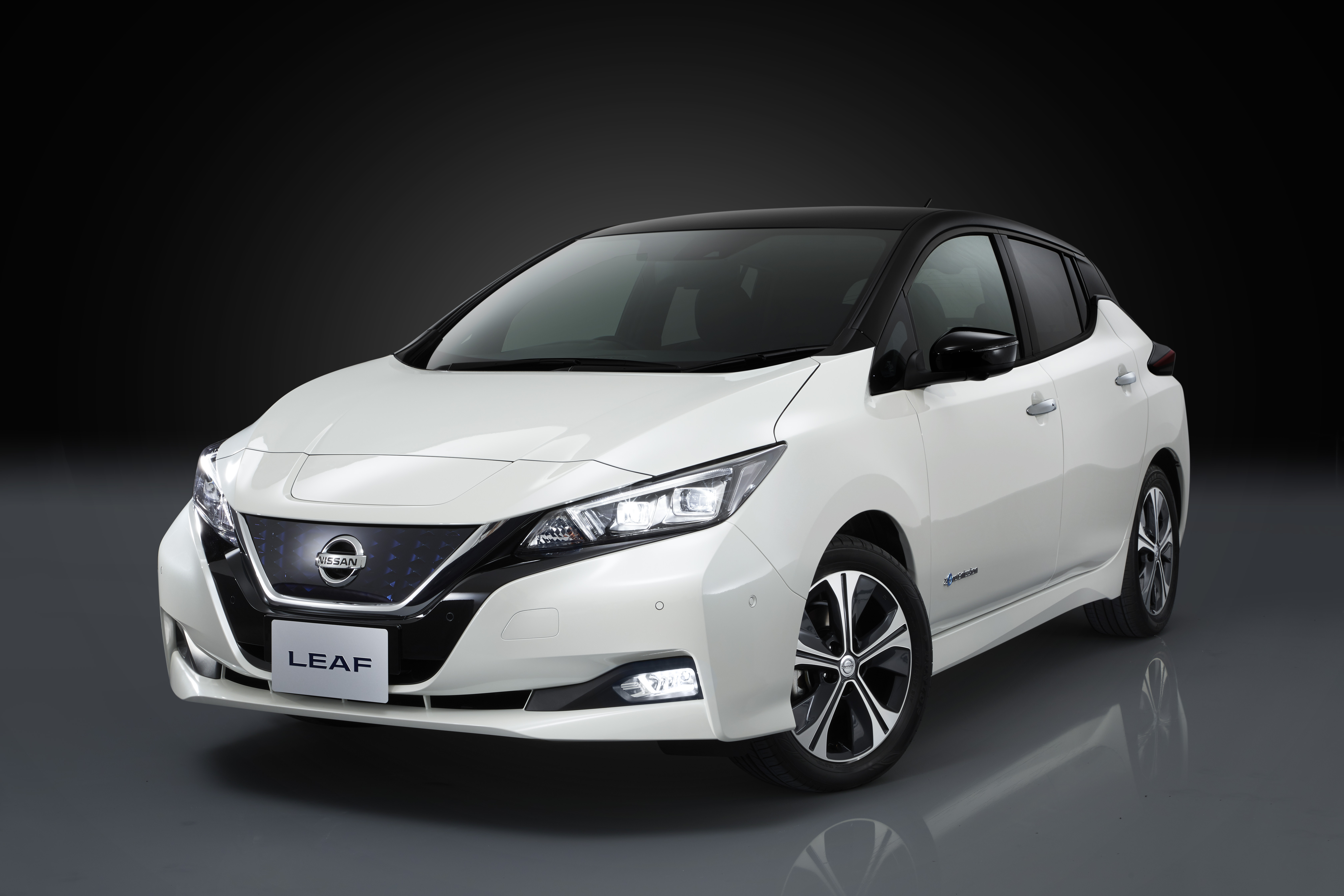 Nissan says the Leaf will be the world's best-selling electric car.