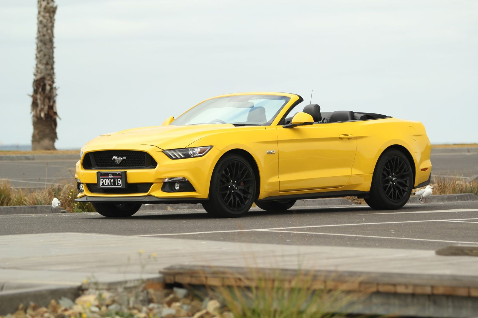 Jaguar XE And F-TYPE Recalled For Seatbelt Safety - Ford Mustang Recalled For Cable Clearance