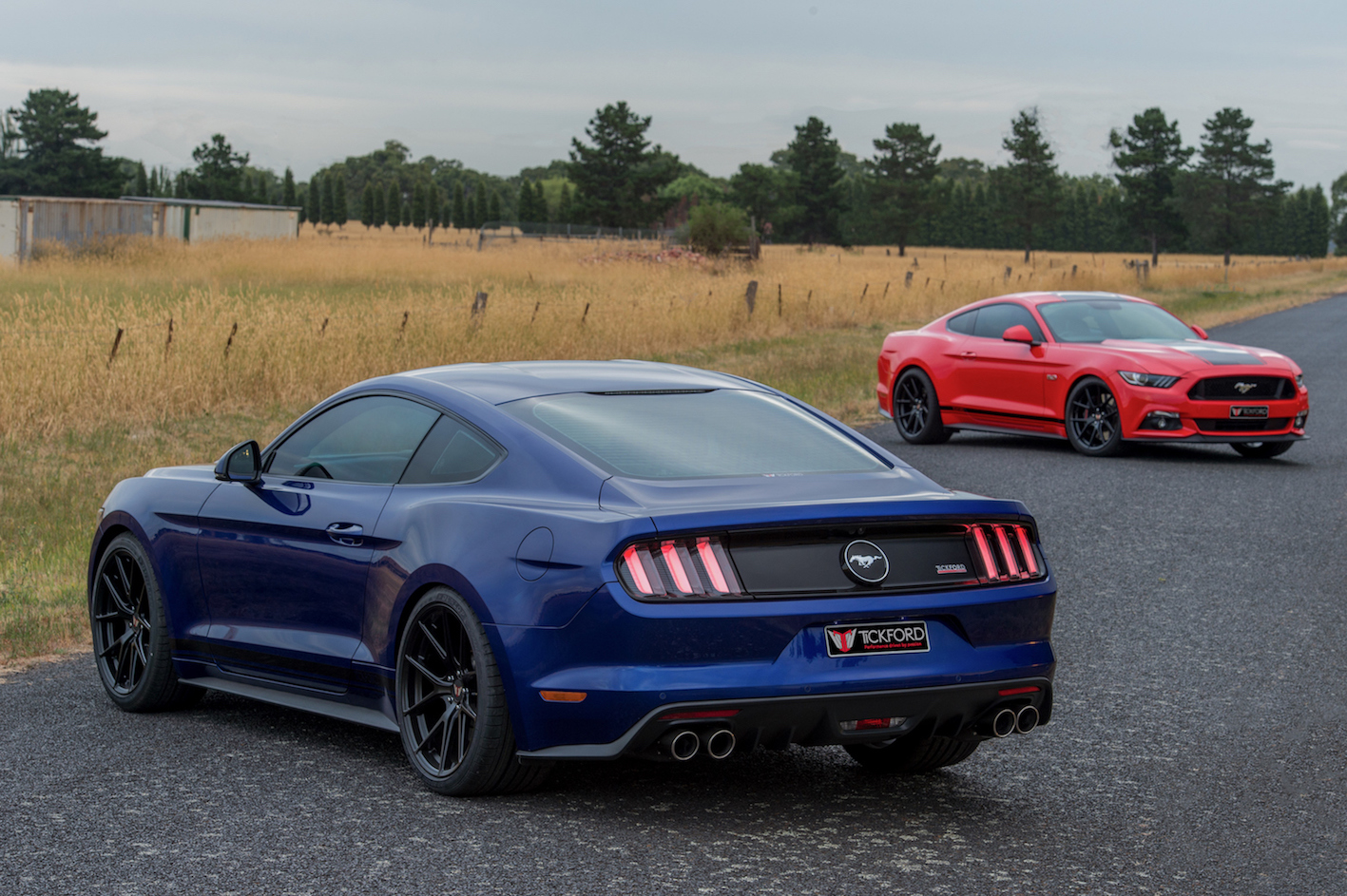Tickford Reveals First Ford Mustang Power-Ups
