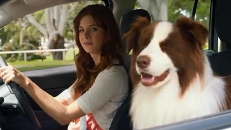 An ad where a female Jeep owner's dog misbehaves after a bout of jealousy was one of the most complained about ads of 2013.