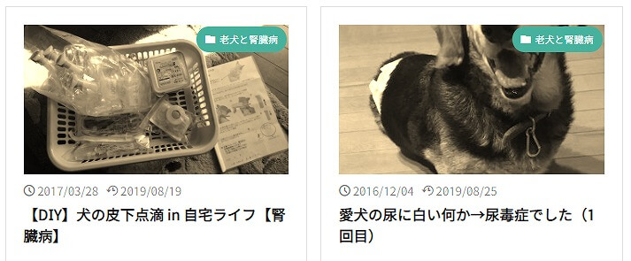 ヨリアログの人気記事「老犬と腎臓病」