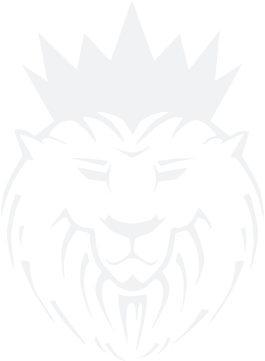 Lion Webdesign logo