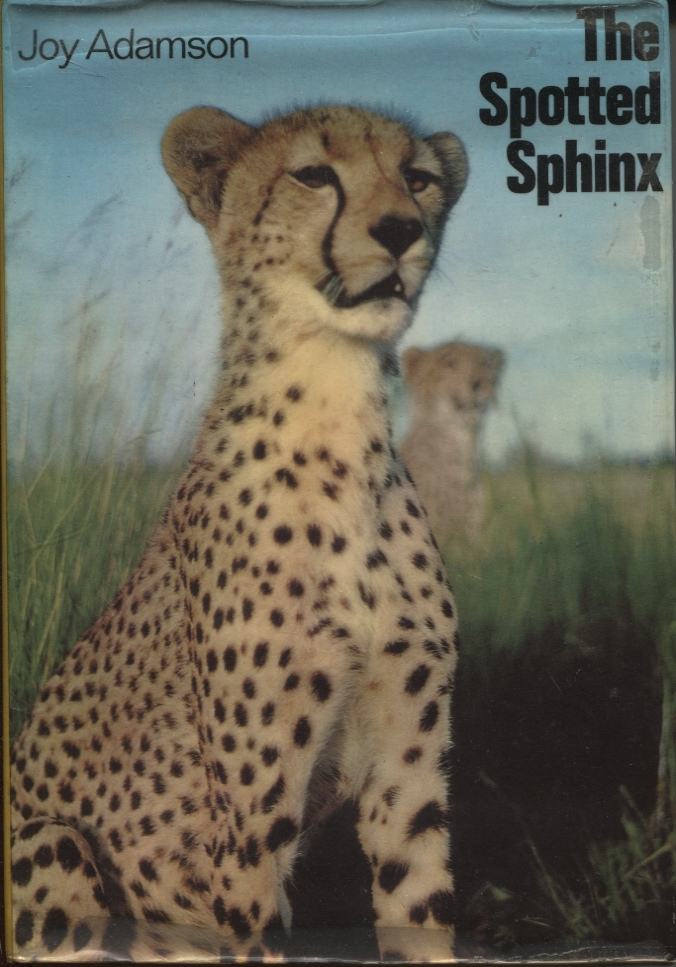 Image for THE SPOTTED SPHINX